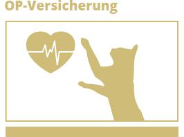 Katzen-OP-Versicherung