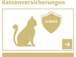 Katzenversicherungen