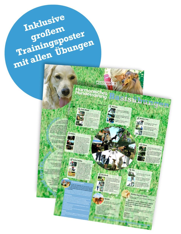 Harmonisches Hundetraining - DVD - Poster