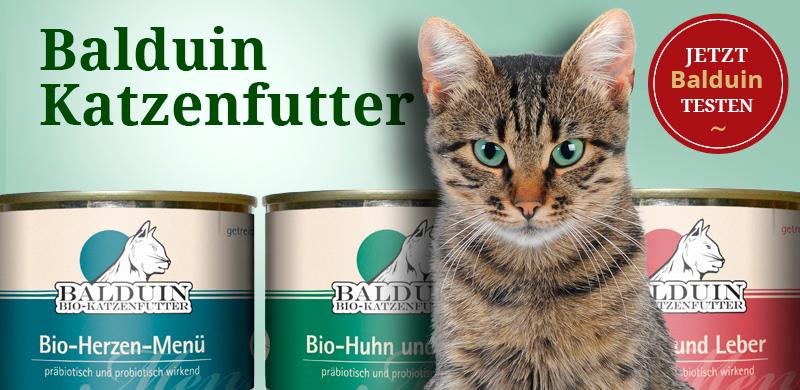 Balduin Katzenfutter