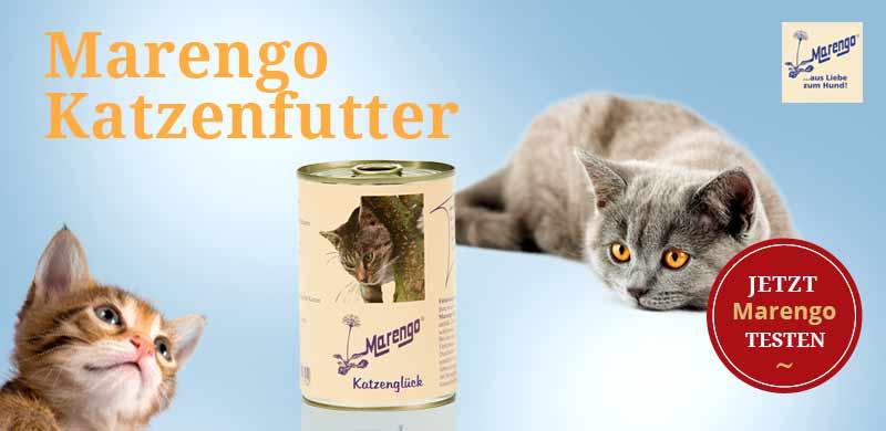 Marengo Katzenfutter Nassfutter