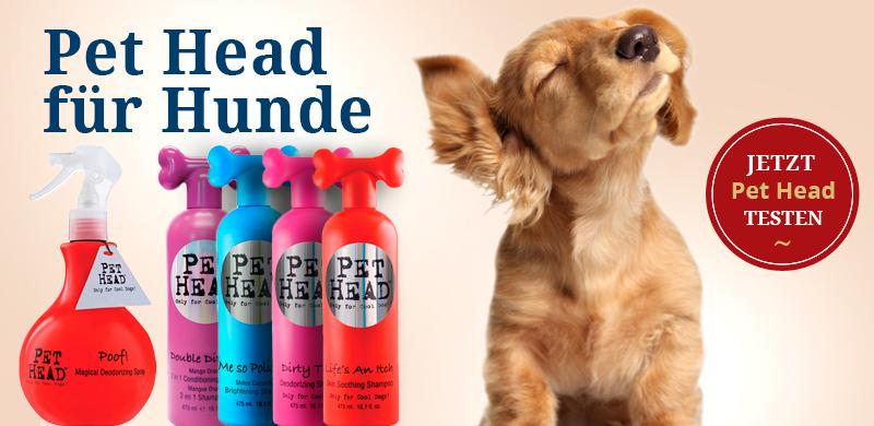 Pet Head für Hunde