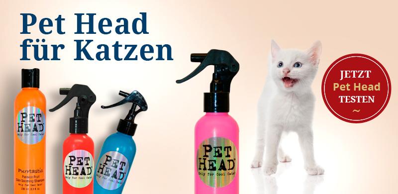 Pet Head für Katzen