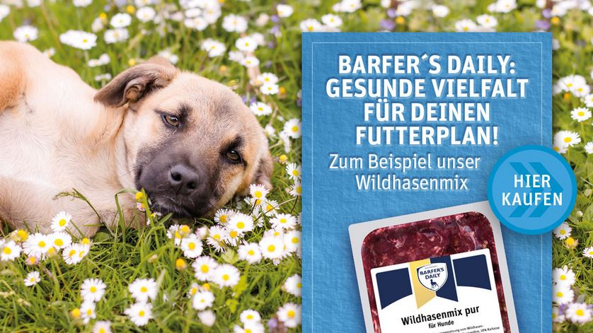 Barfers Wellfood Daily Kaufen