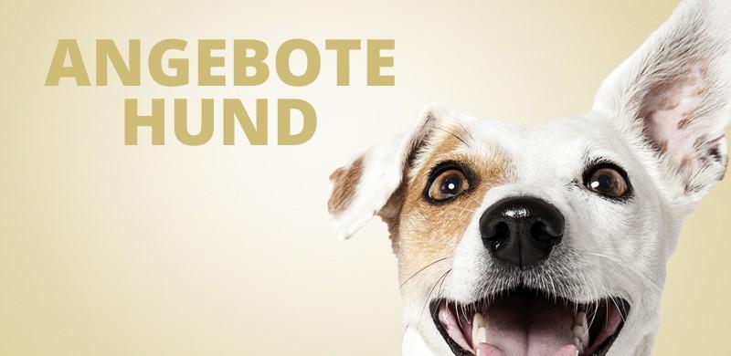Angebote Hundefutter und Hundezubehör