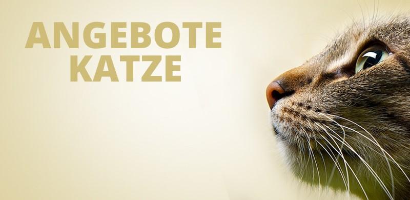 Angebote Katzenfutter und Katzenzubehör