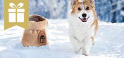 Trockenfutter Aktion Hund - Kleiner Sack gratis