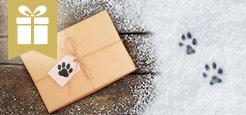 Geschenk gratis Aktion Katze
