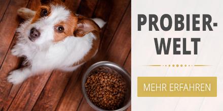 Probierwelt - Hund