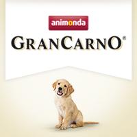 GranCarno Junior