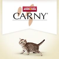 Carny Kitten