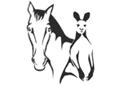 Frostfutter Pferd und Exoten