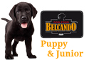Belcando Puppy & Junior