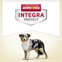 Integra Protect Gelenke