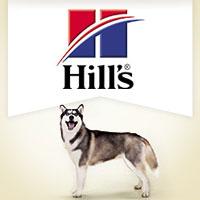 Hill's Ideal Balance