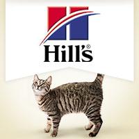 Hill's Feline Adult