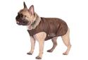 Hundebekleidung für Mops & Co.