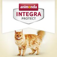 Integra Protect Gelenke