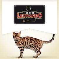 Leonardo Quality Selection
