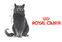 Royal Canin Health
