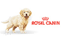 Royal Canin Puppy & Junior