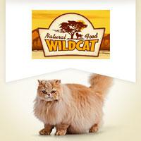 Wildcat mit Geflügel