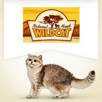 Wildcat mit Pferd