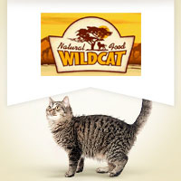 Wildcat Senior