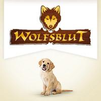 Wolfsblut Puppy