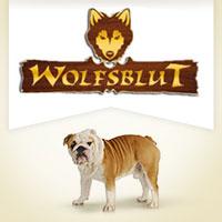 Wolfsblut Squashies