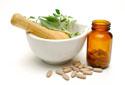 Ergänzungsfutter & Supplemente