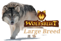 Wolfsblut Large Breed