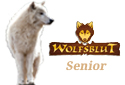 Wolfsblut Senior