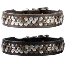 Hunter - Hundehalsband - Arizona mit edlen Schmucknieten