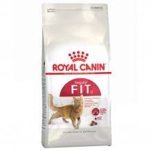 Royal Canin - Trockenfutter - Feline Health Nutrition Fit 32