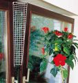 Karlie - Fensterschutzgitter für Katzen