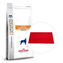 Royal Canin Veterinary Diet - Trockenfutter - Aktion: Trockenfutter + Royal Canin Strandtuch geschenkt