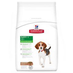 Hill's - Trockenfutter - Science Plan Canine Puppy Healthy Development Lamm mit Reis