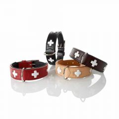 Hunter - Hundehalsband - Swiss