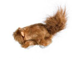 Kong - Katzenspielzeug - Catnip Toys-Eichhörnchen