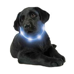 LumiVision - Leucht-Halsband - NEU mit Akku und super hellen LEDs