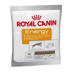 Royal Canin - Hundesnack - Energy Hundeleckerli mit konzentrierter Energie