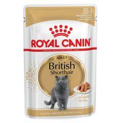 Royal Canin - Nassfutter - Breed British Shorthair Adult Katzenfutter nass für Britisch Kurzhaar