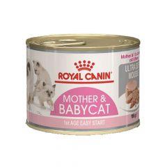 Royal Canin - Nassfutter - Mother & Babycat Mousse für tragende Katzen und Kitten