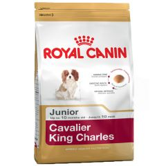 Royal Canin - Trockenfutter - Breed Cavalier King Charles Puppy Welpenfutter trocken