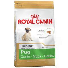 Royal Canin - Trockenfutter - Breed Pug Puppy Welpenfutter trocken für Mops