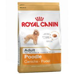Royal Canin - Trockenfutter - Breed Poodle Adult Hundefutter trocken für Pudel