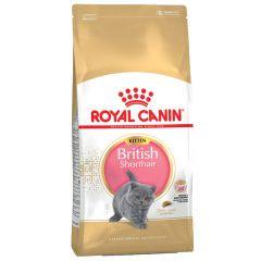 Royal Canin - Trockenfutter - Breed British Shorthair Kittenfutter trocken für BKH Kätzchen