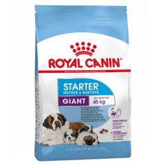 Royal Canin - Trockenfutter - Size Giant Starter für tragende Hündin und Welpen