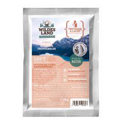 Wildes Land - Trockenfutter - Soft Truthahn und Lachs mit Reis und Wildkräutern 70g (glutenfrei)
